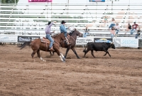 Amateur Team Roping Registration